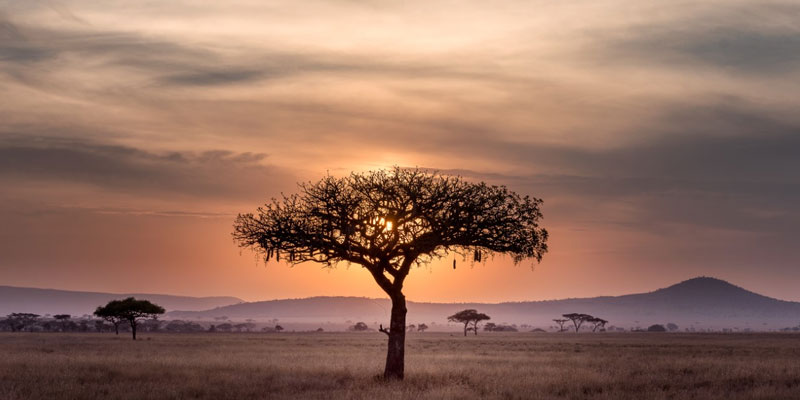 CREATING SUSTAINABLE BUSINESS IN AFRICA